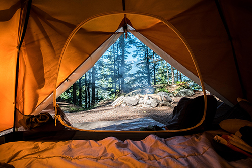 Photo of a tent looking out at the woods