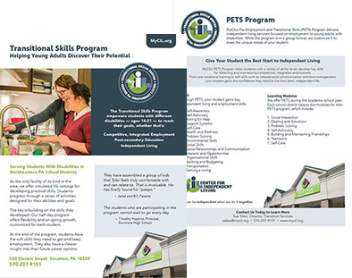 pre employment and transitional skills program overview203x262 - The Program