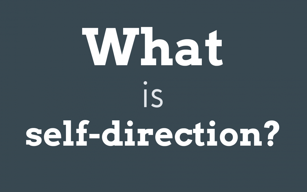 Self-Direction: What Is It? And What Is It Not?