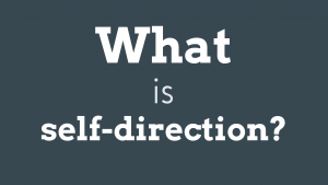 Screenshot of the what is self-direction videographic